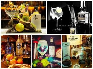 fbernardo-inal-concurso-gin-tonics-de-bilbao