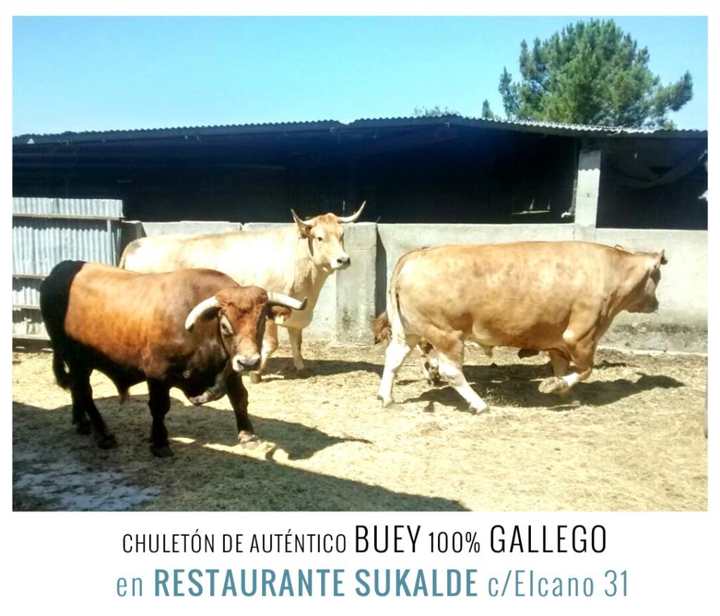 restaurante sukalde buey gallego bilbao