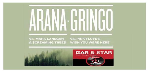 arana_gringo_concierto-campos eliseos bilbao