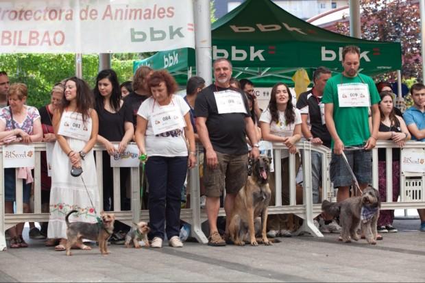 concurso fotografico perros y gatos bilbao