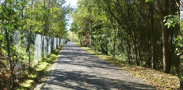 via verde atxuri