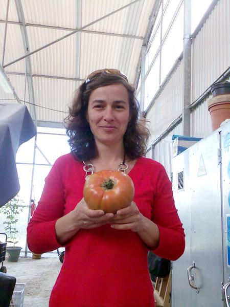 tomates naturales huerta bilbao